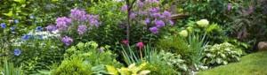 So schön kann Gärtnern sein